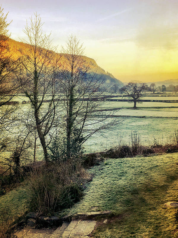 Frost Poster featuring the photograph Frosty Morning Light by Mo Barton