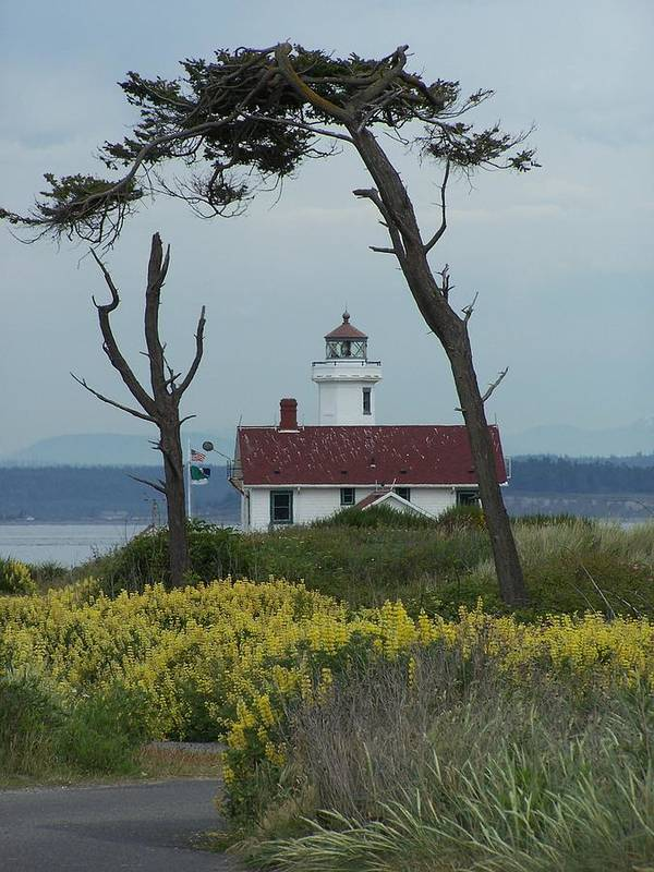 Light House Poster featuring the photograph Ft. Warden Lighthouse by Gene Ritchhart