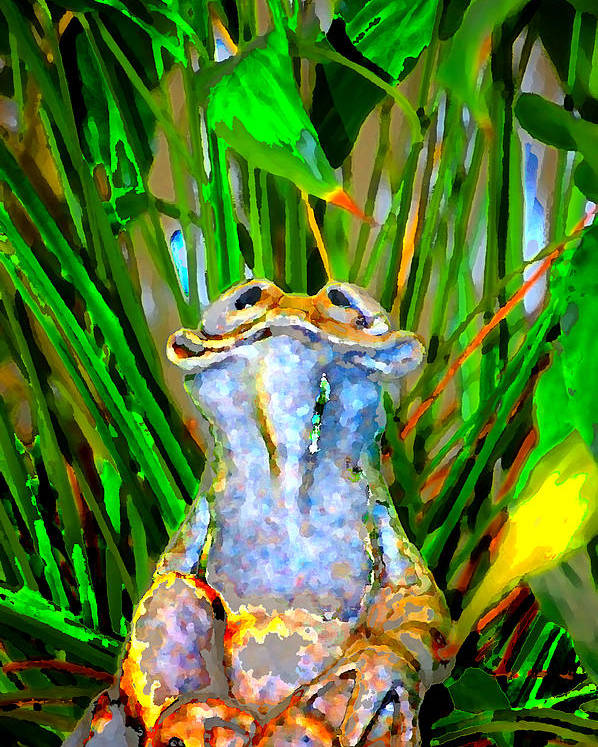 Poster featuring the digital art Funny Frog by Danielle Stephenson