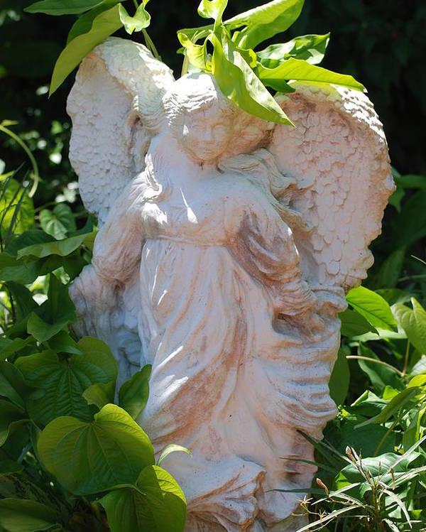 Angels Poster featuring the photograph Garden Angel by Rob Hans