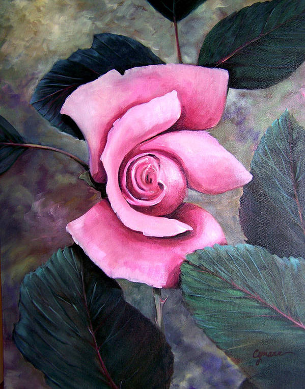 Rose Floral Pink Oil Painting. Oil Poster featuring the painting Generational Rose by Cynara Shelton