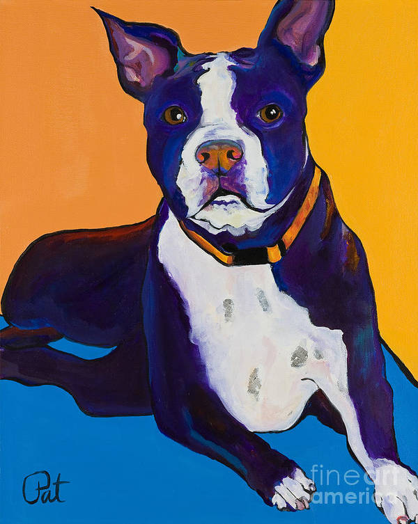 Boston Terrier Poster featuring the painting Georgie by Pat Saunders-White