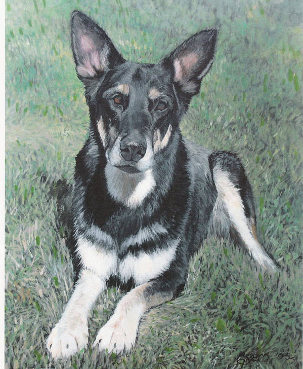 Pet Portrait Poster featuring the painting German Shepard by Steve Greco