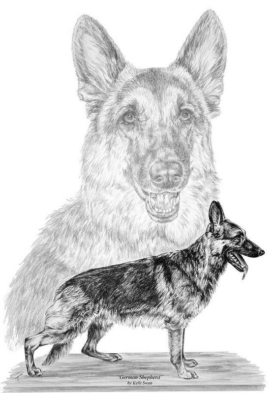 German Poster featuring the drawing German Shepherd Dogs Print by Kelli Swan
