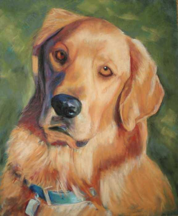 Golden Retriever Poster featuring the painting Golden Boy by Billie Colson
