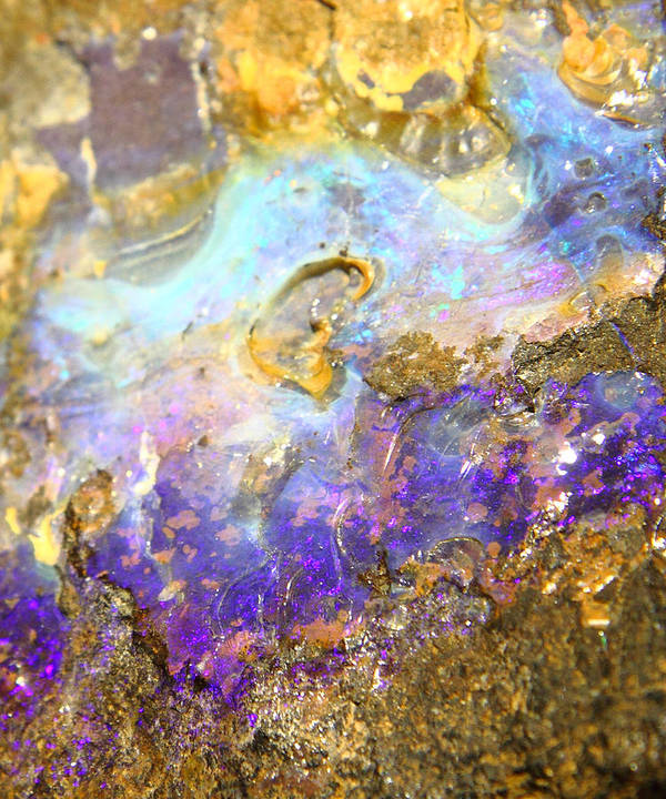 Shimmery Blue & Purple Opal Encrusted In Gold Poster featuring the photograph Golden Opal by The Quarry