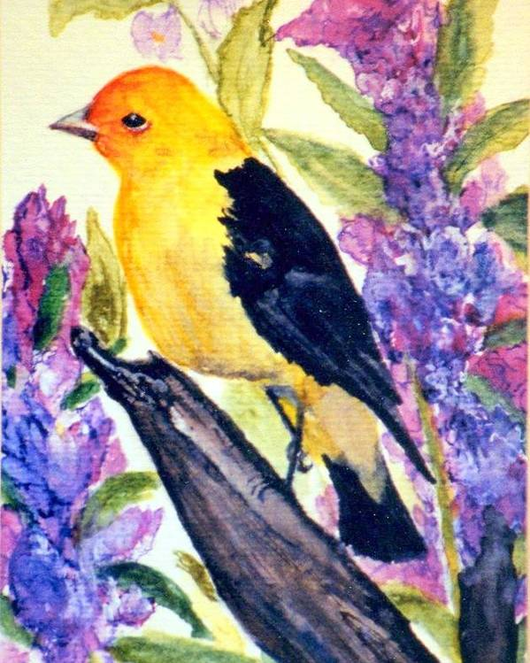 Birds Poster featuring the painting Goldfinch by Gail Kirtz