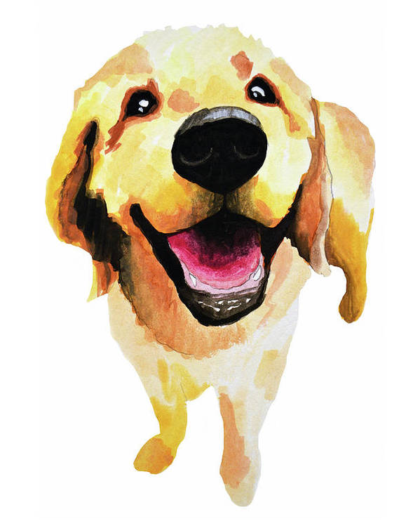 Dog Poster featuring the painting Good Boy by Amy Giacomelli