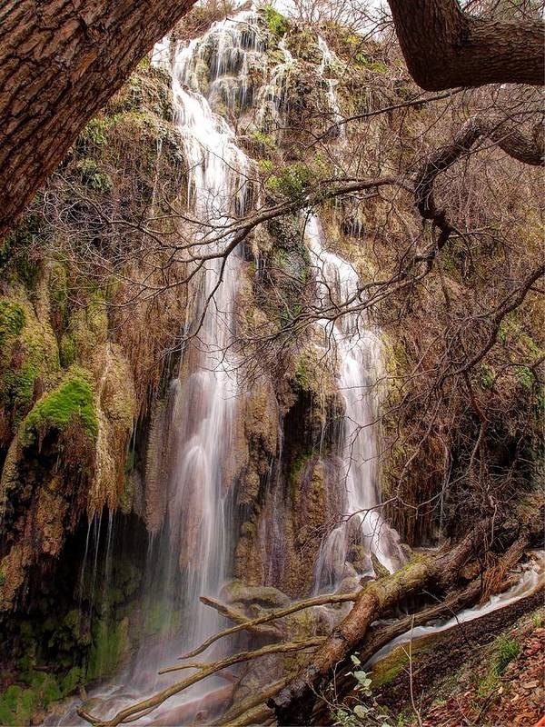Waterfall Poster featuring the photograph Gorman Falls by Elizabeth Clements