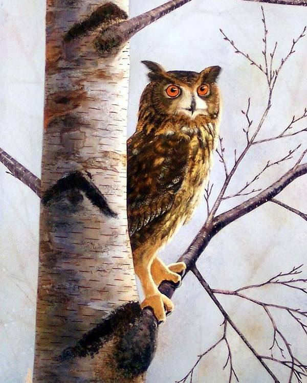 Great Horned Owl In Birch Poster featuring the painting Great Horned Owl In Birch by Frank Wilson