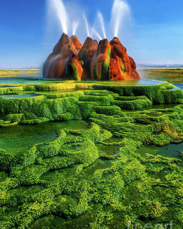 America Poster featuring the photograph Green Fly Geyser by Inge Johnsson