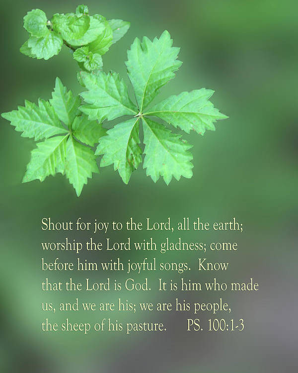 Scripture Poster featuring the photograph Green Leaves Ps.100 V 1-3 by Linda Phelps
