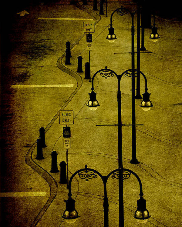 Lantern Poster featuring the photograph Green Light by Susanne Van Hulst