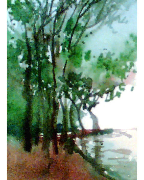 Water Color Poster featuring the painting Greens by Anil Nene