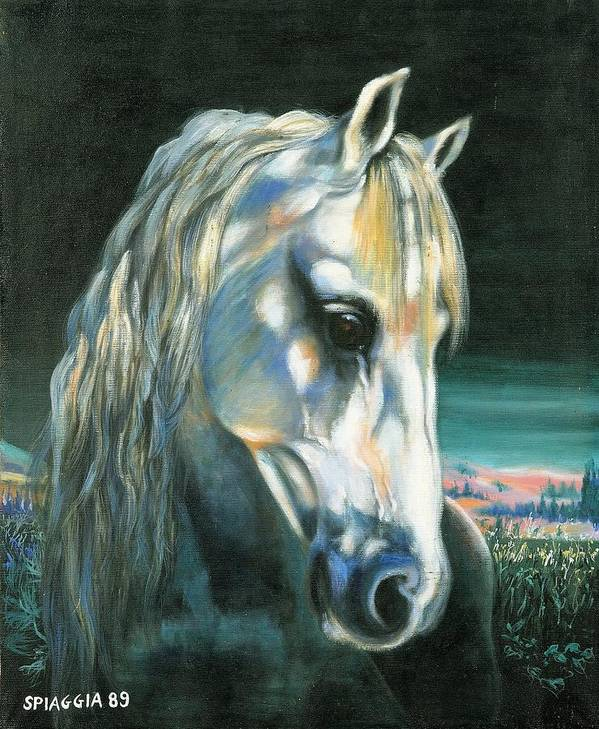 Horse Poster featuring the painting Gringo Etalon Portugais by Josette SPIAGGIA