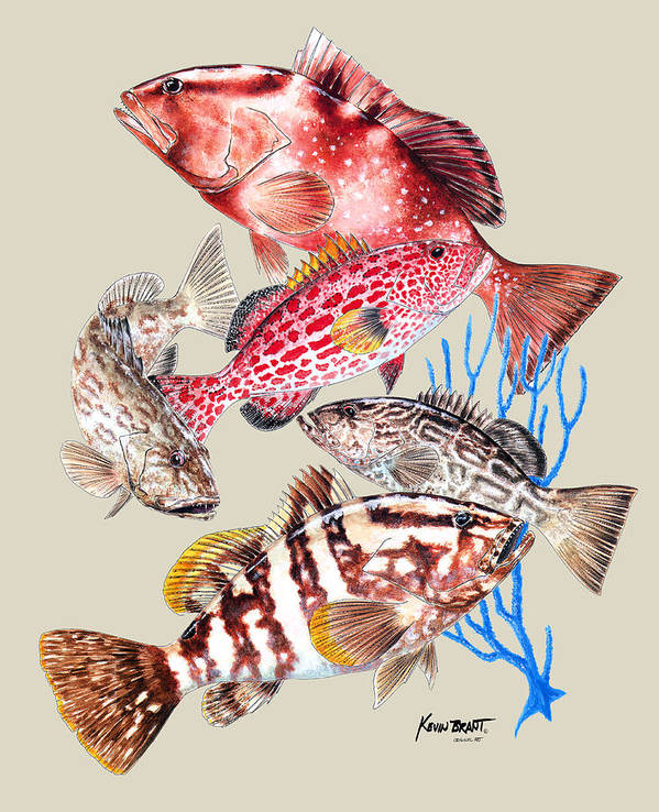 Grouper Poster featuring the painting Grouper Montage by Kevin Brant