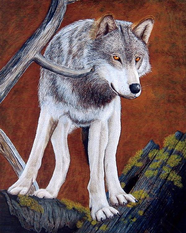 Guardian Poster featuring the mixed media Guardian Of The Den by Lorraine Foster