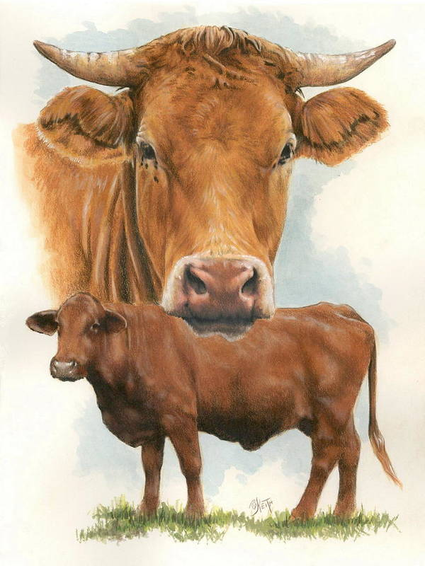 Cow Poster featuring the mixed media Guernsey by Barbara Keith