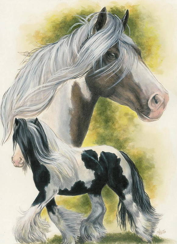 Horse Poster featuring the mixed media Gypsy Vanner by Barbara Keith