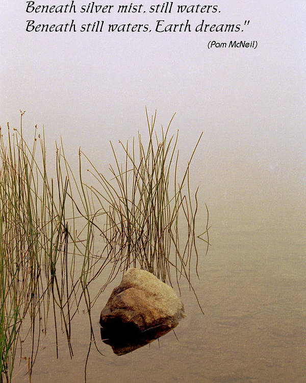 Fog Poster featuring the photograph Haiku Poster by Roger Soule