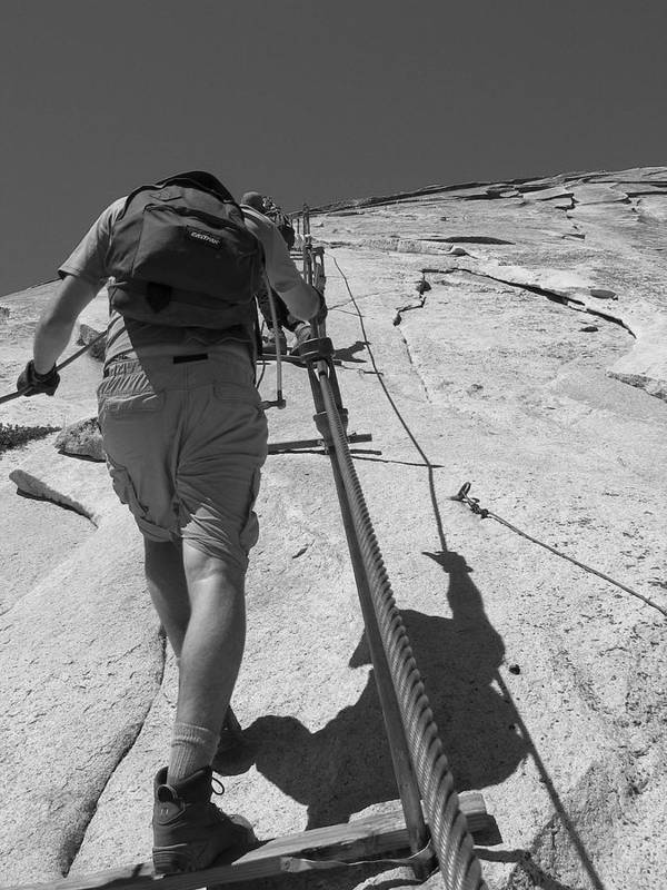 Half Dome Poster featuring the photograph Half Dome Cables by Travis Day