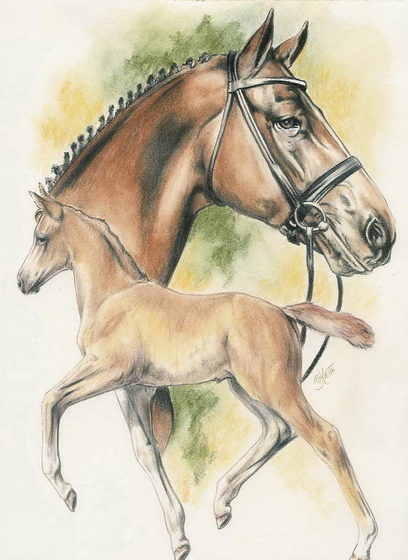 Pet Poster featuring the mixed media Hanoverian by Barbara Keith