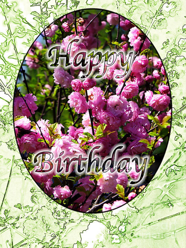 Happy Poster featuring the photograph Happy Birthday - Greeting Card - Almond Blossoms No. 2 by Sascha Meyer
