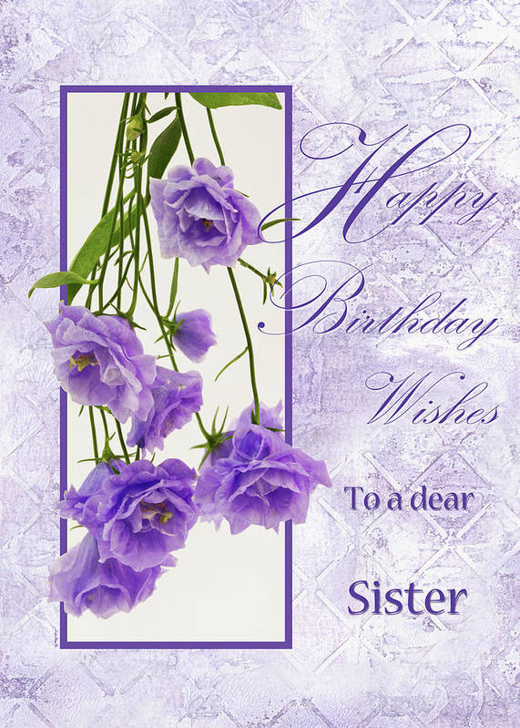 Sisters Birthday Poster Featuring The Photograph Happy Wishes To A Dear Sister By Sandra Foster