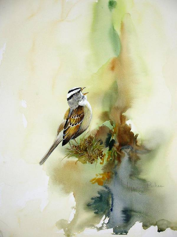 White-crowned Sparrow Poster featuring the painting Happy Sparrow by Lynne Parker