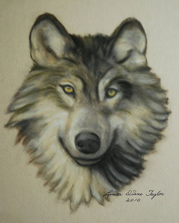 Timber Poster featuring the painting Happy Wolf by Linda Diane Taylor