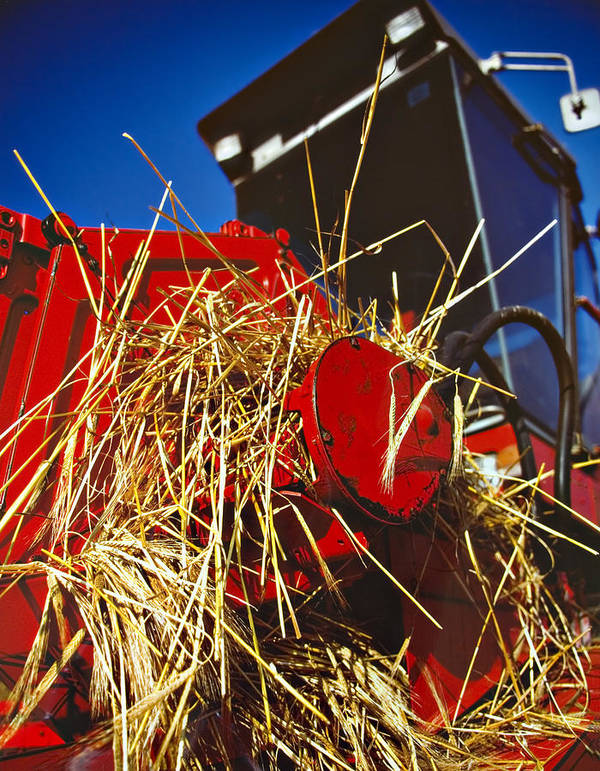 Combine Poster featuring the photograph Harvesting by Meirion Matthias