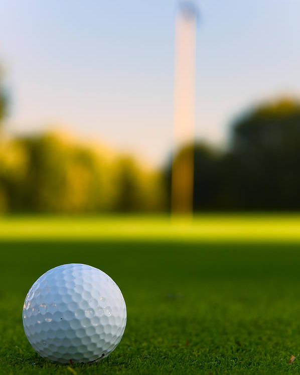 Golf Poster featuring the photograph Have A Ball by Edwin Voorhees