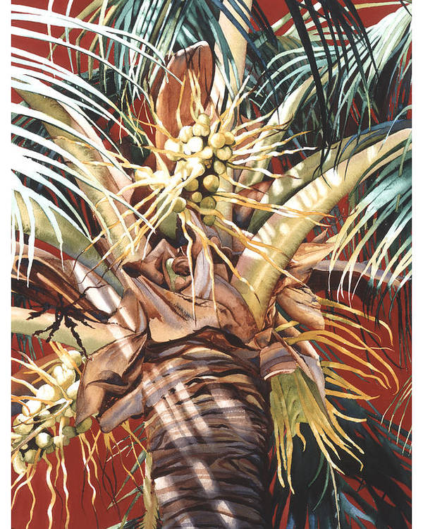 Coconut Palm Palms Tree Red Breeze Hawaiian Maui Hawaii Poster featuring the painting Hawaiian Fireworks by Mike Hill