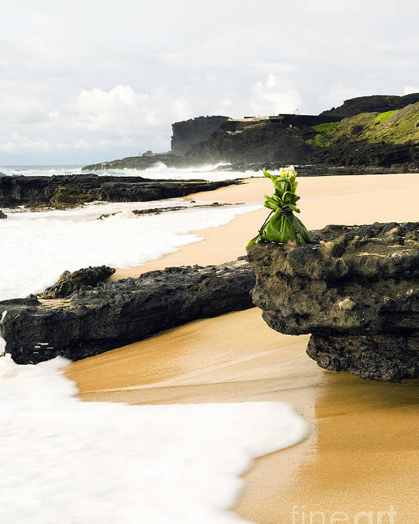Arrange Poster featuring the photograph Hawaiian Offering On Beach by Dana Edmunds - Printscapes