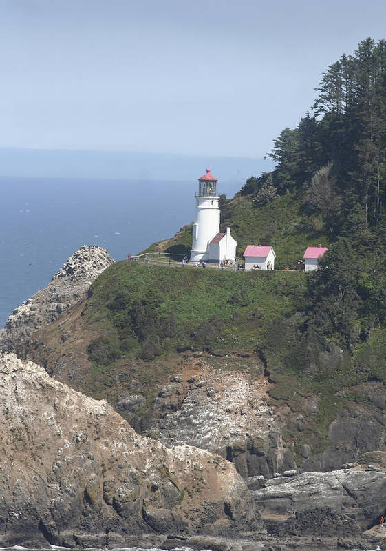 Lighthouse Poster featuring the photograph Heceta Head Lighthouse Li 9000 by Mary Gaines