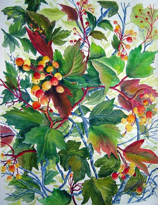 Hi Bush Cranberries Poster featuring the painting Hi-bush Cranberries by Joanne Smoley