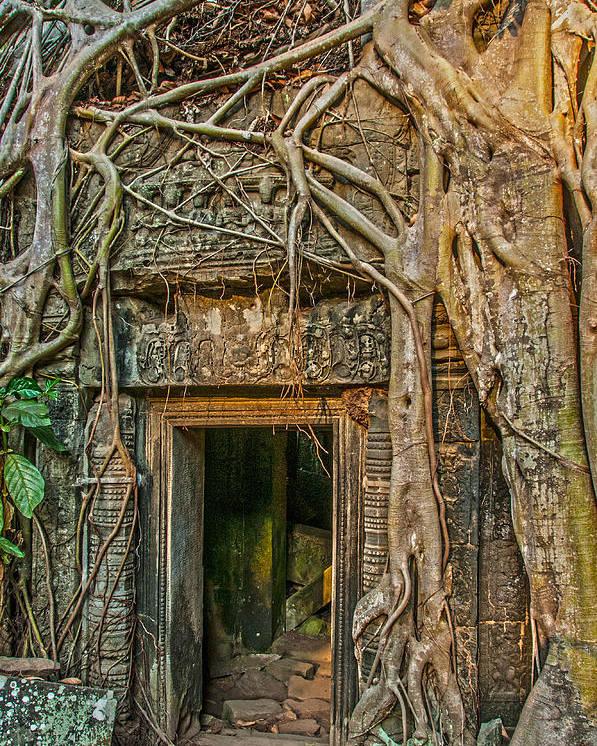 Jungle Wat Poster featuring the photograph Hidden Door by Nichon Thorstrom