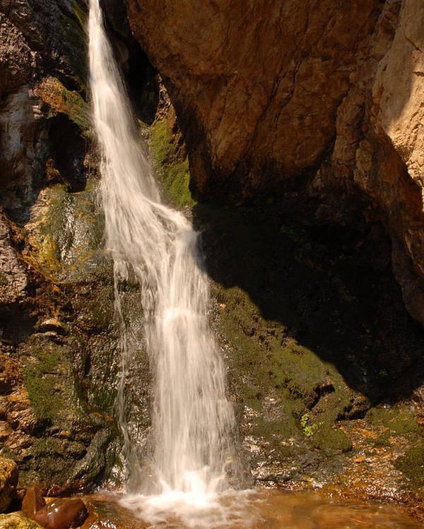 Waterfall Poster featuring the photograph Hidden Falls by Dennis Hammer