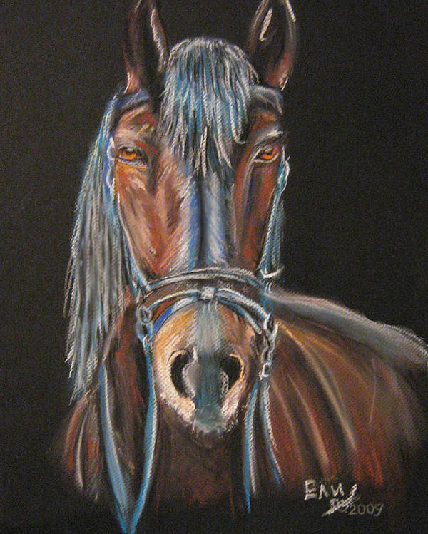 Pastel Poster featuring the pastel Horse by Eli Marinova