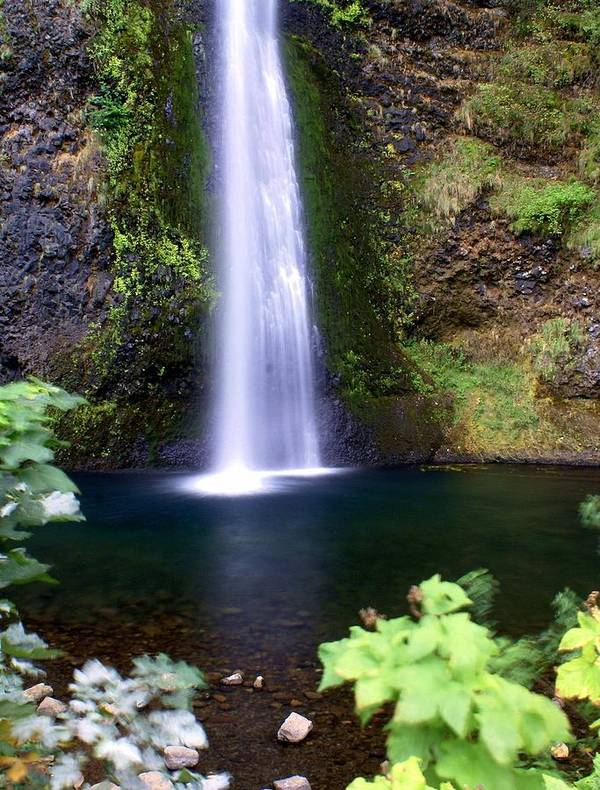 Waterfalls Poster featuring the photograph Horsetail Falls by Marty Koch