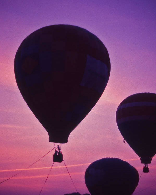 Hot Air Balloon Poster featuring the photograph Hot Air Balloon - 8 by Randy Muir