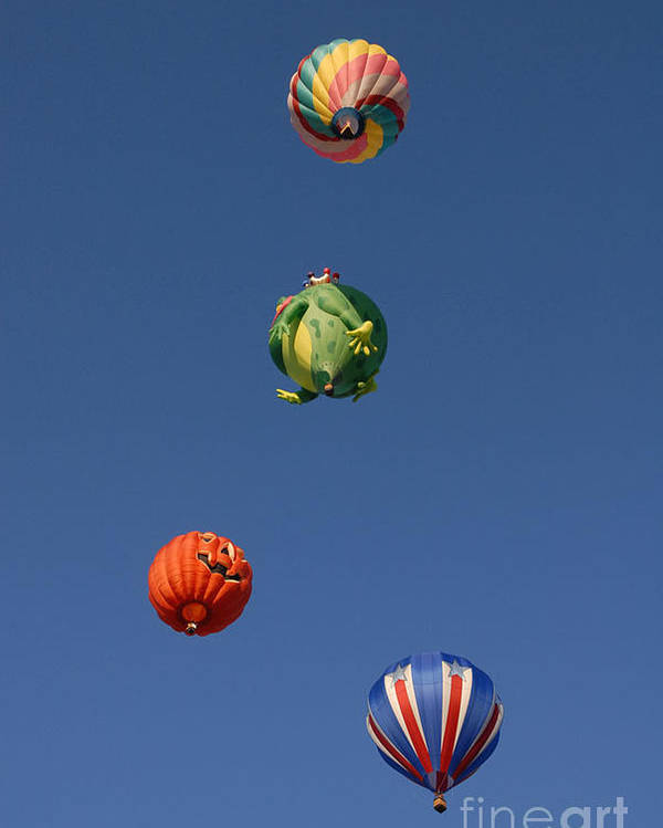 Hot Air Balloon Poster featuring the photograph Hot Air Rally by Dennis Hammer