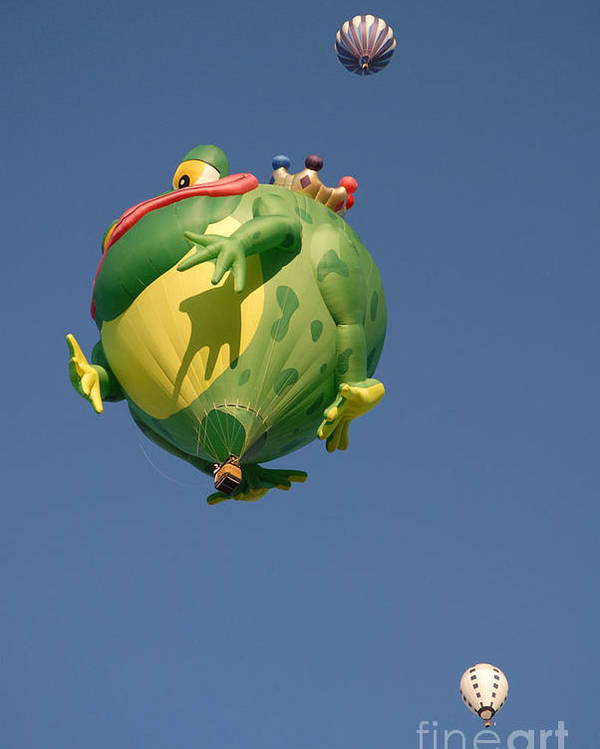 Hot Air Balloon Poster featuring the photograph Hot Frog by Dennis Hammer