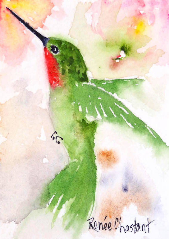 Hummingbird Poster featuring the painting Hovering Anna's Hummingbird by Renee Chastant