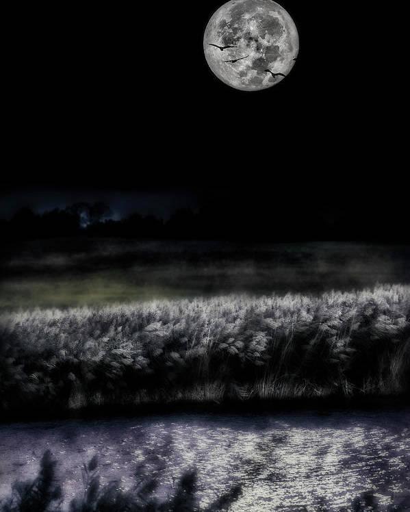 Hunter Moon Photo Poster featuring the photograph Hunters Moon by Garett Gabriel