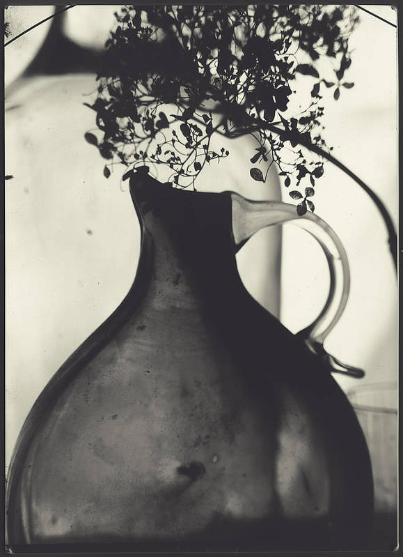 Hydrangea Poster featuring the photograph Hydrangea And Vase by Alexey Shportun