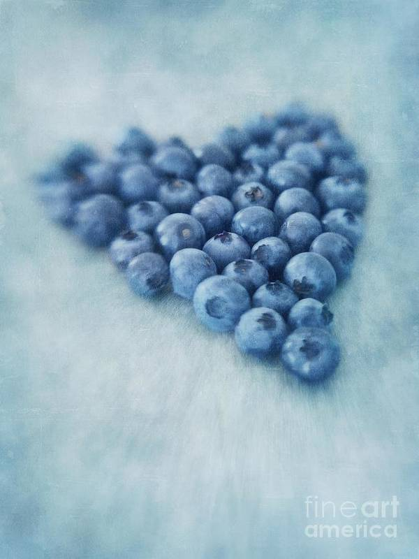 Blueberry Poster featuring the photograph I Love Blueberries by Priska Wettstein