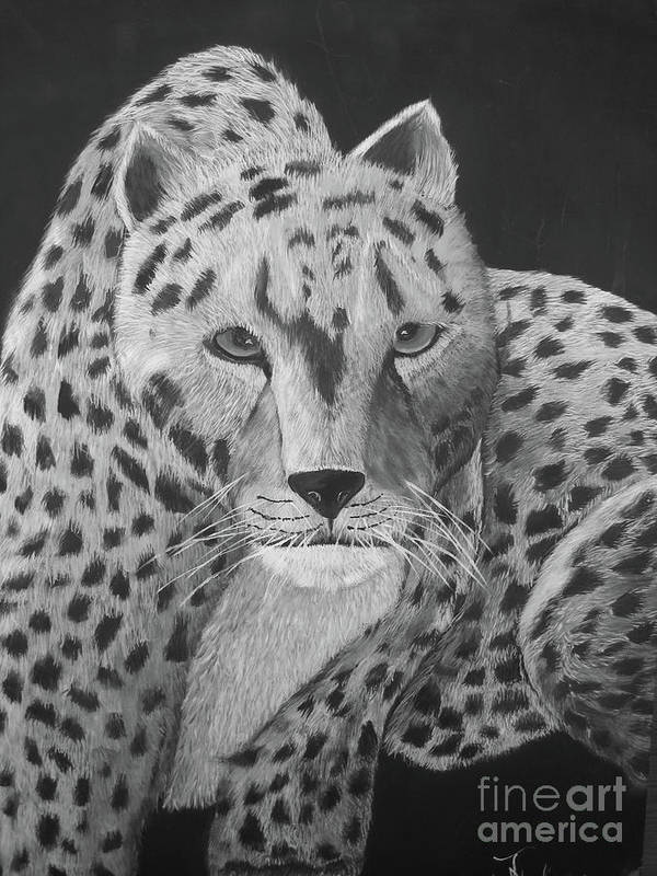 Leopard Poster featuring the painting I'm Coming by John Nickerson