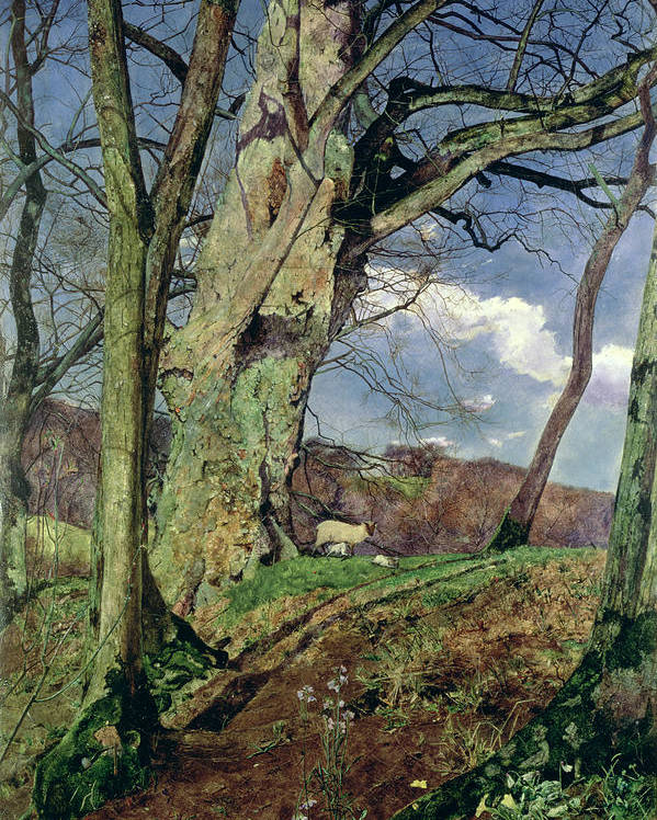 In Early Spring: A Study In March (oil On Canvas) By John William Inchbold (1830-88) Poster featuring the painting In Early Spring by John William Inchbold
