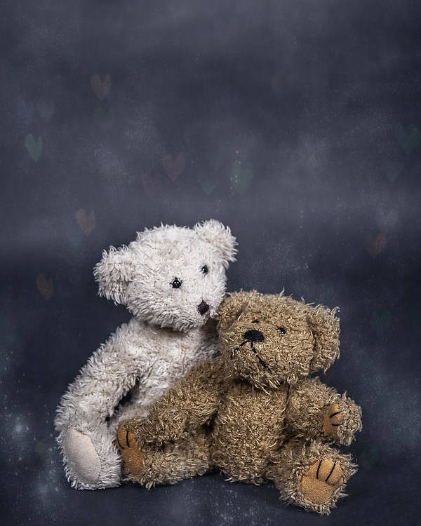 Teddy Poster featuring the photograph In Love by Joana Kruse